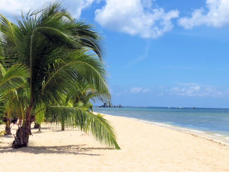 Is Cozumel, Mexico Safe? Ultimate Travel Safety Guide