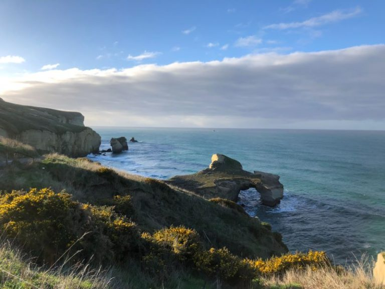 Is Dunedin Worth Visiting? 7 Reasons Why You Must Visit!